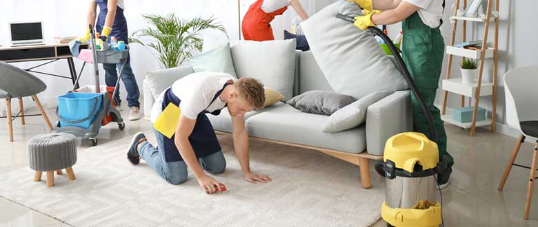 SEO for Carpet Cleaners and Manufacturers
